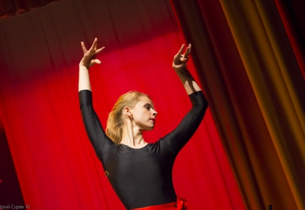 flamenco_in_tver-32