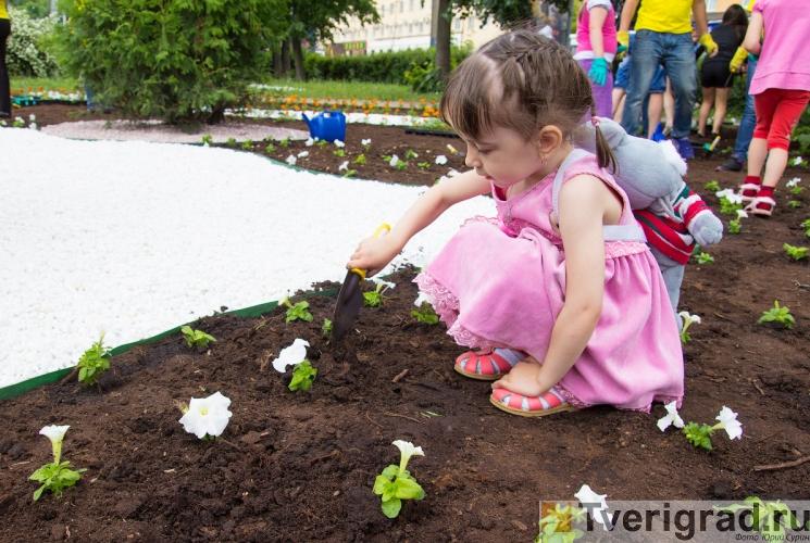 tver-cvetushhij-gorod-49
