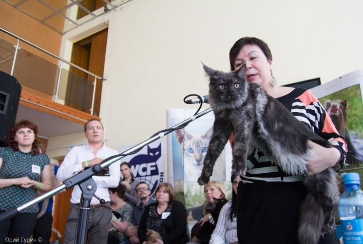 mezhdunarodnaja-vystavka-koshek-v-tveri-2013-35