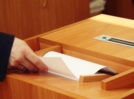 Выборы в ТГД