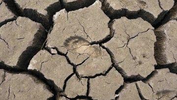 """Аномальная жара """"почти несомненно"""" объясняется глобальным потеплением?"""