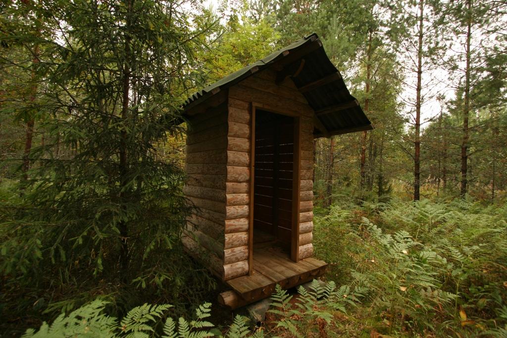 Туалет в лесу фото и
