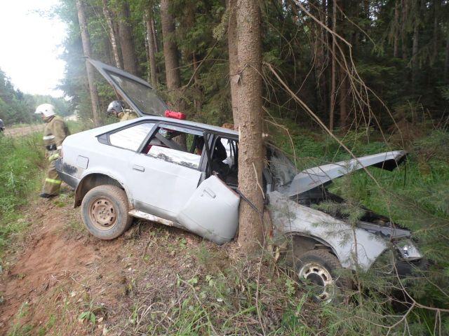 В Селижарово водитель упал в кювет и убежал