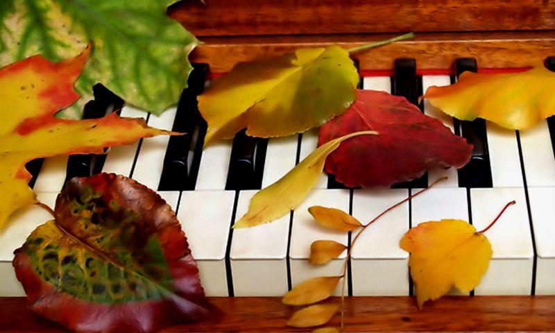 музыка и осень