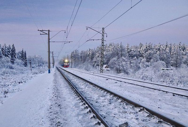 В северной столице сняли споезда зацеперов, которые ехали между вагонами изТвери