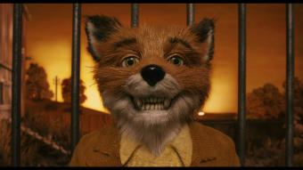 Мультик «Бесподобный мистер Фокс»