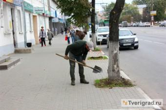 Озеленение Советской