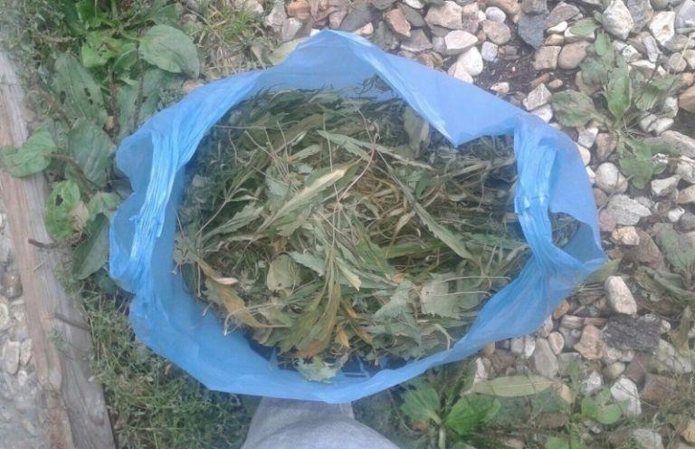 ВТверской области полицейские отыскали полтора килограмма марихуаны