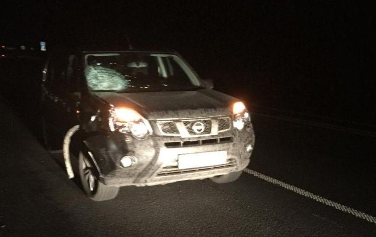 Натрассе М-10 шофёр иномарки насмерть сбил неизвестного мужчину