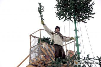 монтаж елки