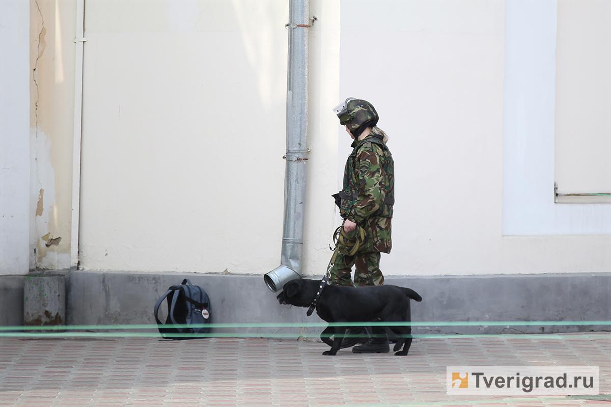 На профилактику терроризма и экстремизма в Твери в ближайшие пять лет потратят 15 миллионов рублей