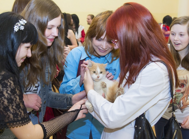 anime_in_tver-44