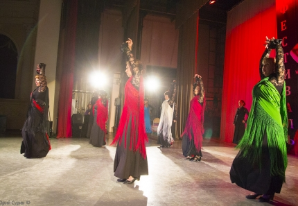 flamenco_in_tver-26