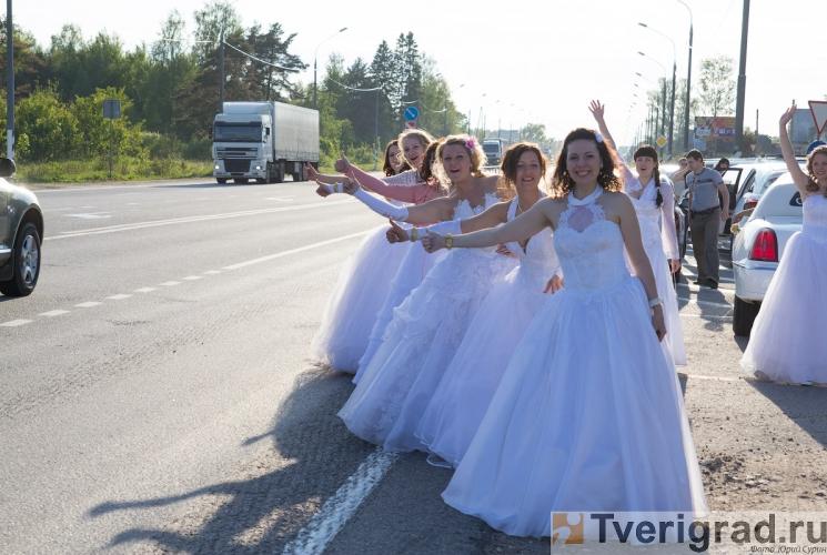 sbezhavshie-nevesty-cosmo-tver-2012-78