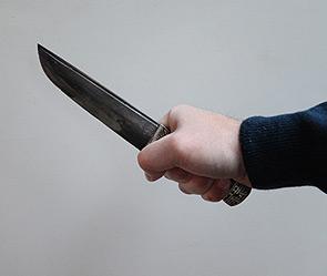 Лезбиянка убила свою подругу тверь