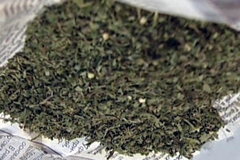Конопля 10 грамм через какое время марихуана выводится из крови