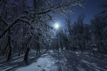 луна, зима, мороз