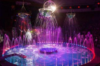 «Цирк на воде»
