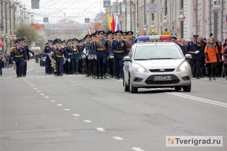 Граждане Тверской области могут посодействовать ветеранам впроцессе акции «Красная гвоздика»